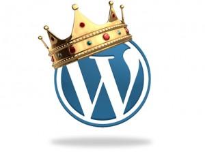 houston wordpress web design